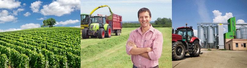 Assicurazioni per aziende agricole
